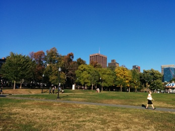 Autumn in Boston is a good thing